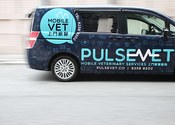 pulsevet the mobile vet hk
